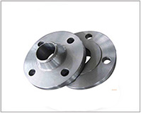ASTM A182 SS 304 Forged Flanges